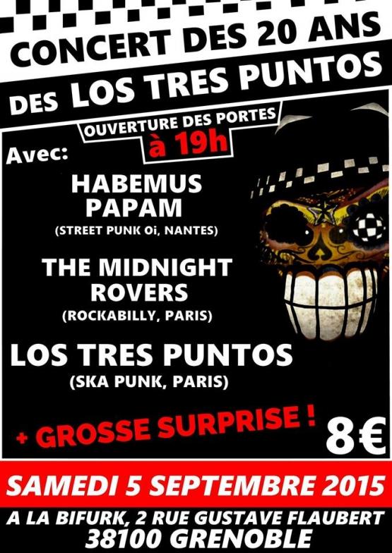 Grenoble20ans2015